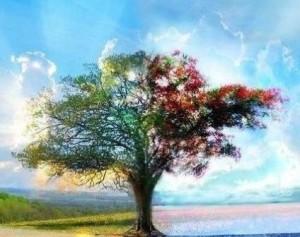 7 cualidades de personas altamente espiritual-photo
